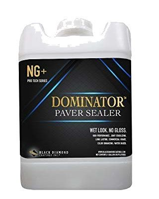 Black Diamond NG+ Dominator Paver Sealer